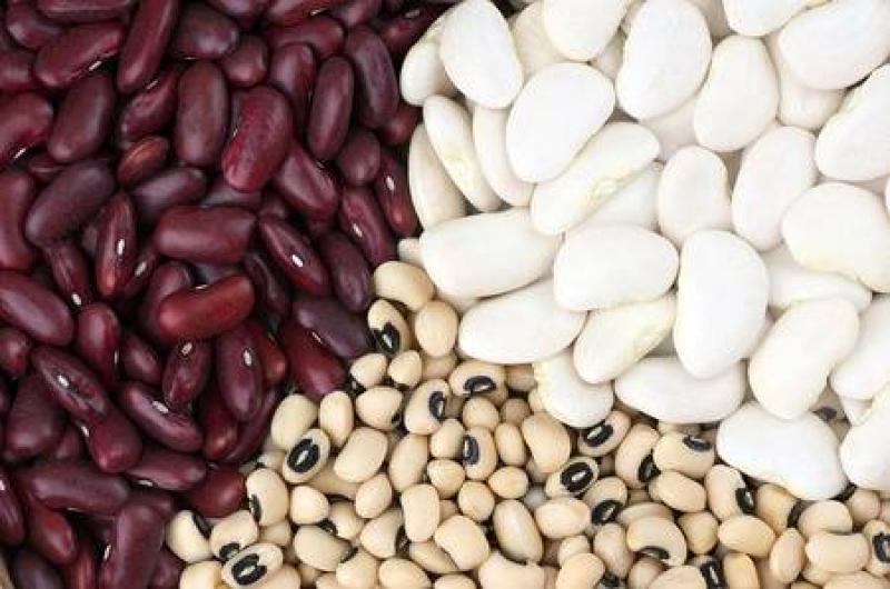 Frijol, haba y arveja granos secos representan el 82.54% de la producción nacional de legumbres