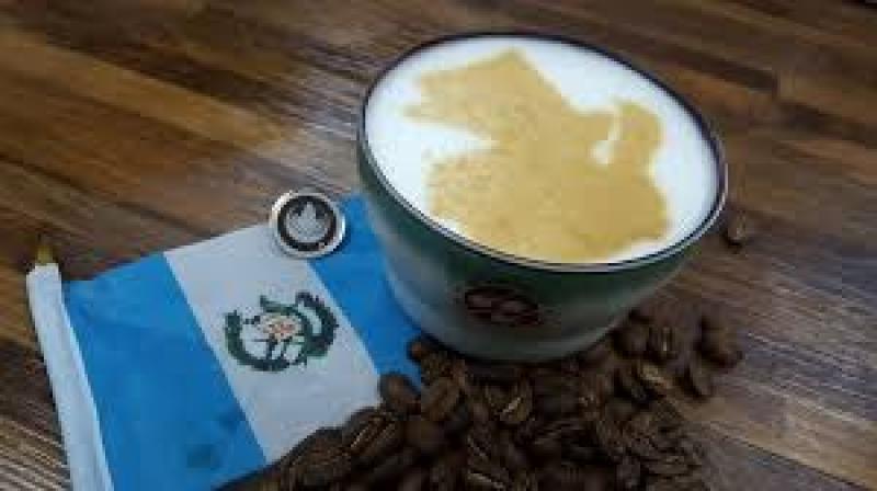 Guatemala abandona ICO tras desplome de precios del café por coronavirus