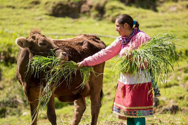 Hoy se inicia el I Foro Regional de Agricultura y Ganadería Familiar Andina