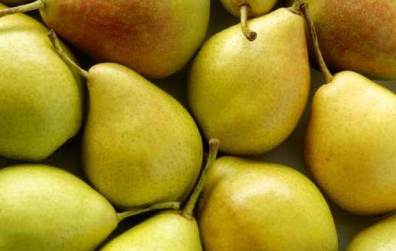Importación de peras sumó US$ 4.6 millones
