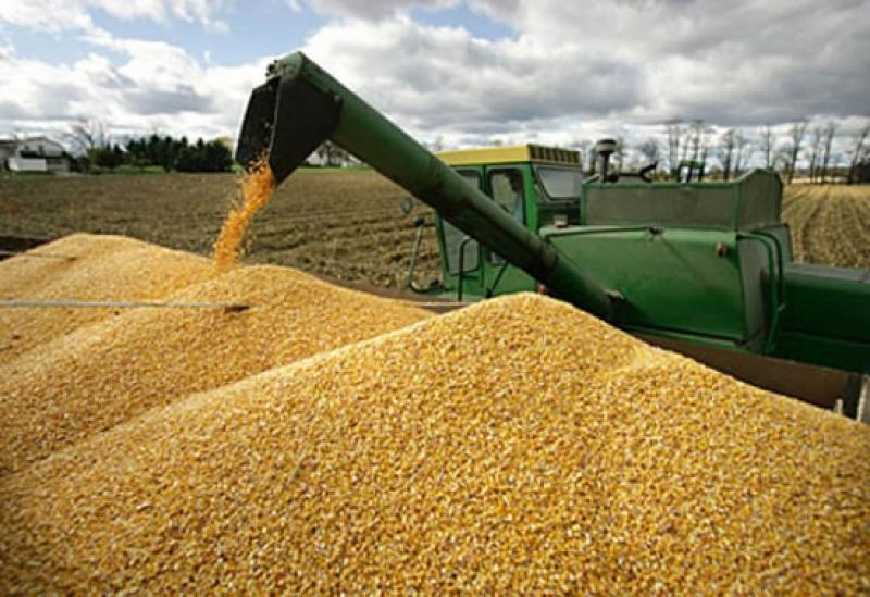 Importaciones de aceite de soya en bruto superan los US$ 314 millones