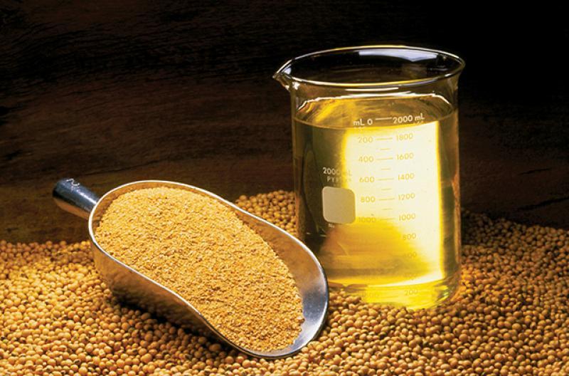 Importaciones de aceite de soya refinado suman US$ 31.5 millones