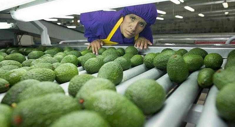 IncaSource Trading quiere crecer en Rusia