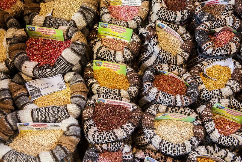 Incremento de áreas de cultivo de quinua es importante para que su consumo alcance a estratos populares