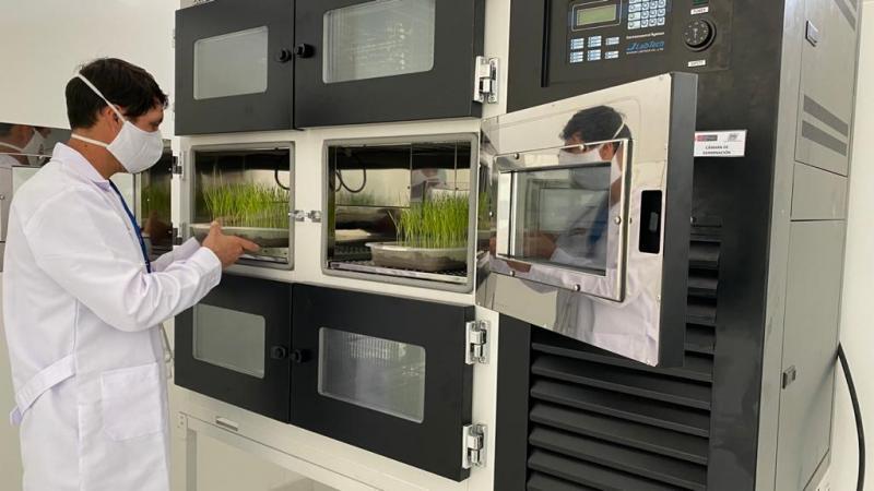 INIA implementa moderno laboratorio de semillas y biofertilizantes para procesar y generar semillas certificadas