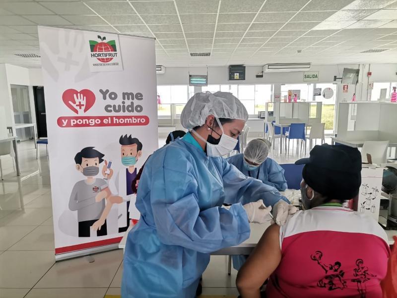 La Libertad: 1.164 trabajadores agroindustriales de Hortifrut fueron inoculados con vacuna contra el Covid-19