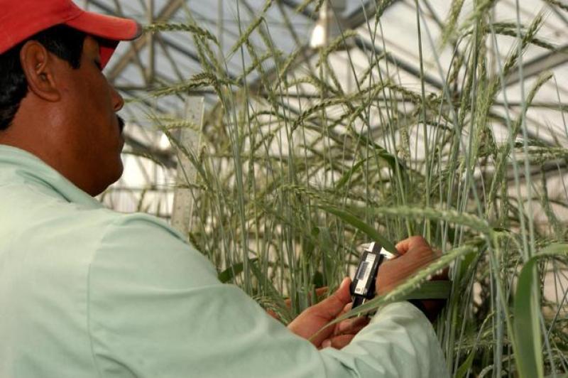 La tecnología nuclear y sus aplicaciones en agricultura