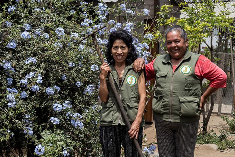 Lanzan novedoso sello de certificación comunitaria para agricultores urbanos de Lima