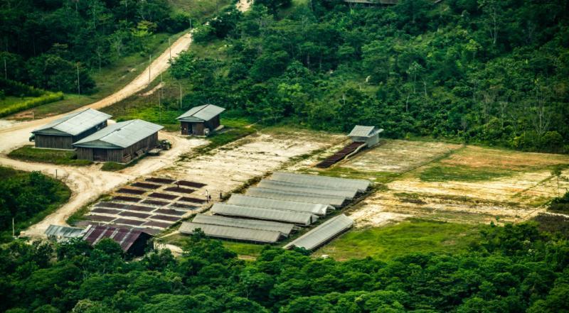 Loreto: anulan sentencia contra empresa acusada de deforestar casi 2 mil hectáreas