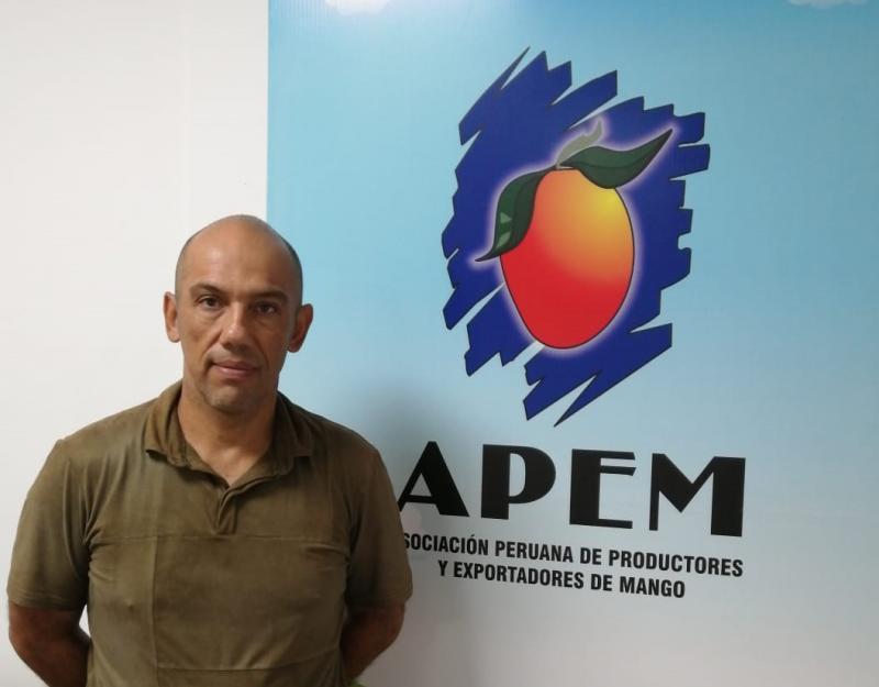 Mangos de Perú ponen sus miras en Asia y en tener una industria cohesionada