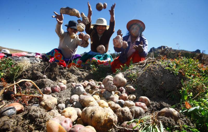 Midagri: En 2020 ingresaron a los principales mercados mayoristas de Lima Metropolitana más de 3.7 millones de toneladas de alimentos, 1.4% más que el año previo
