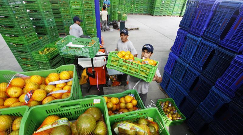 Minagri: exportaciones peruanas de frutas sumaron casi US$ 1.900 millones entre enero y julio