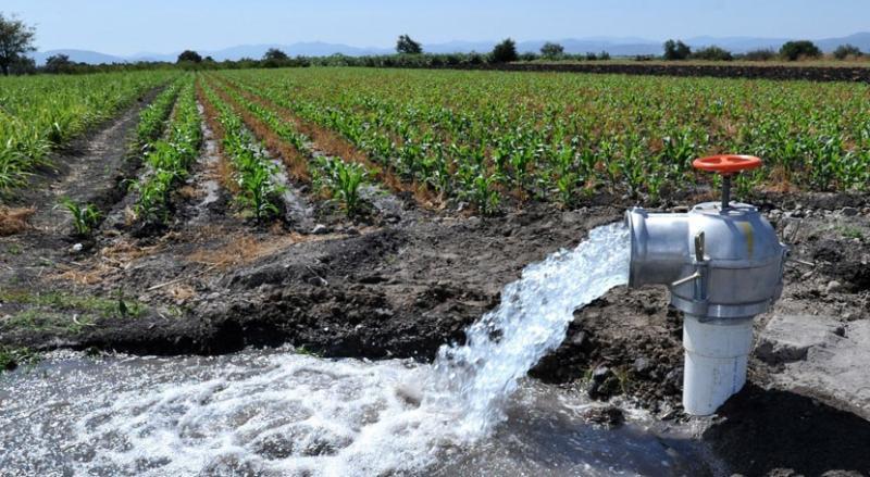 Minagri garantizará el recurso hídrico para la agricultura