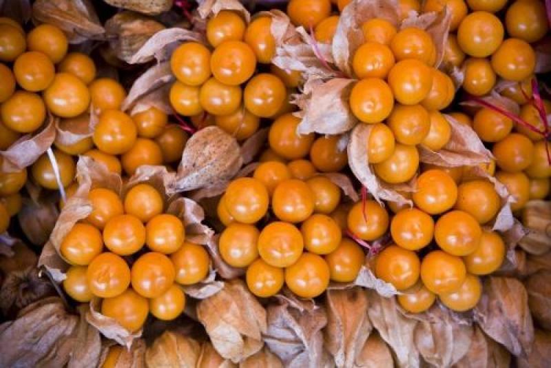 Minagri recomienda consumo de alimentos que fortalecen el sistema inmune