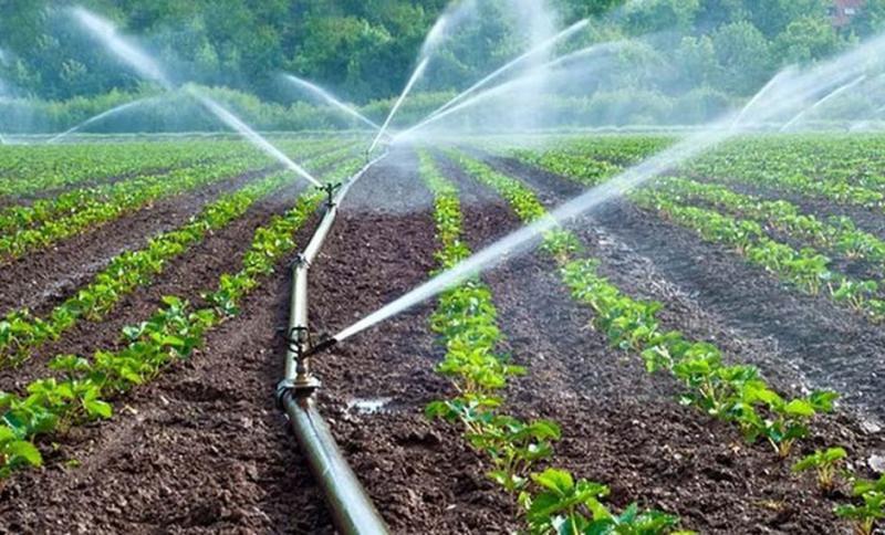 Minagri transfirió S/ 15.2 millones para obras de infraestructura de riego en Madre de Dios