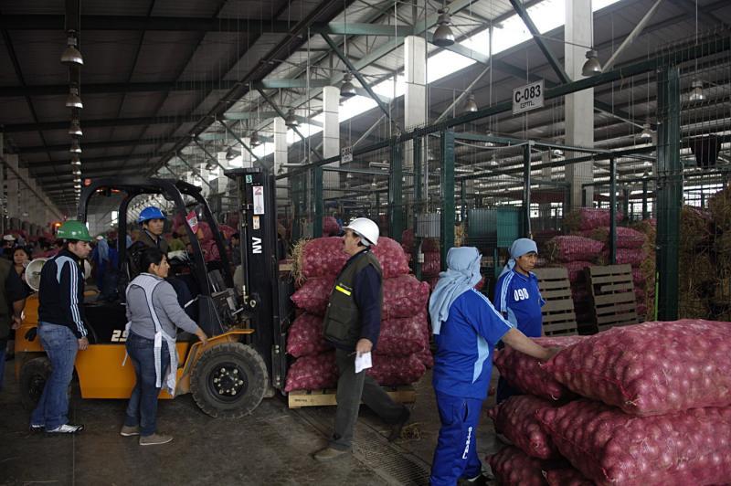 MTC: Los productos alimenticios están llegando a los mercados de abastos con total normalidad