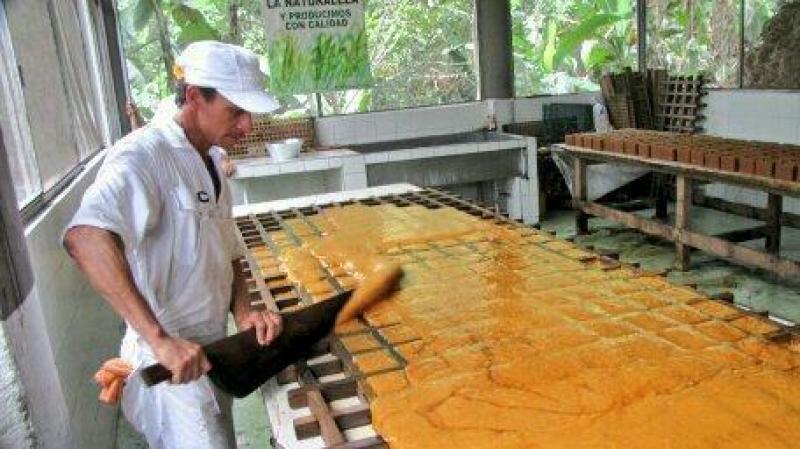 Norandino proyecta exportar 2.500 toneladas de panela este año