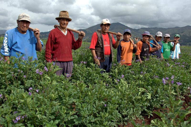 OIT destaca urgencia de prevenir y mitigar contagio del Covid-19 en zonas rurales