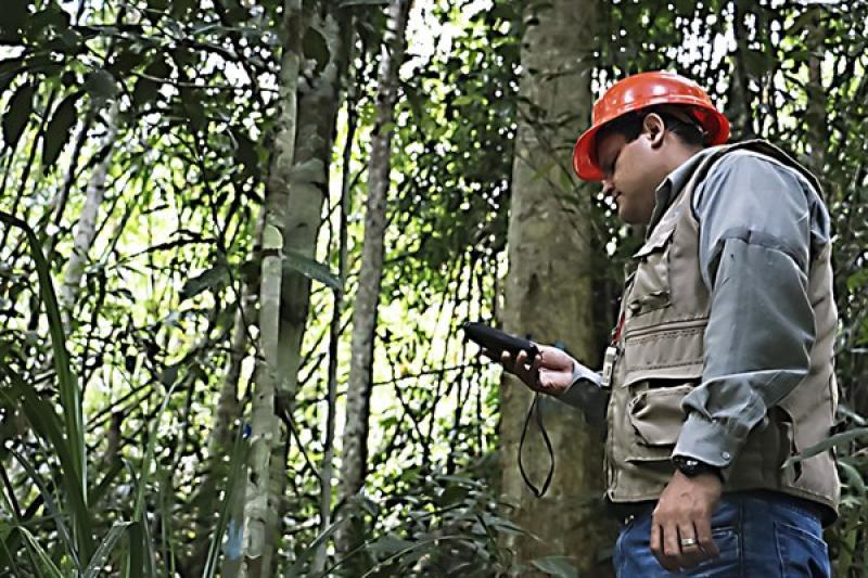Osinfor aprueba nuevo reglamento para la supervisión de los recursos forestales y de fauna silvestre