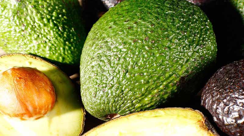 Perú debe posicionar sus agroexportaciones en el marco de la alimentación saludable
