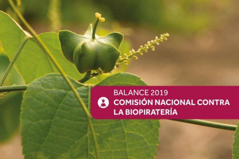 Perú detecta 24 nuevos casos de biopiratería en varias oficinas de patentes en el extranjero durante 2019