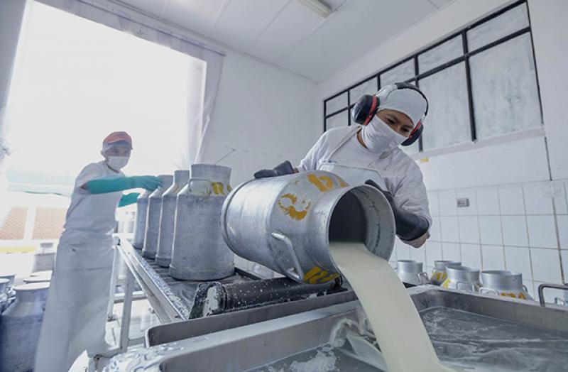Planta de lácteos de Espinar revalidó  certificación sanitaria internacional