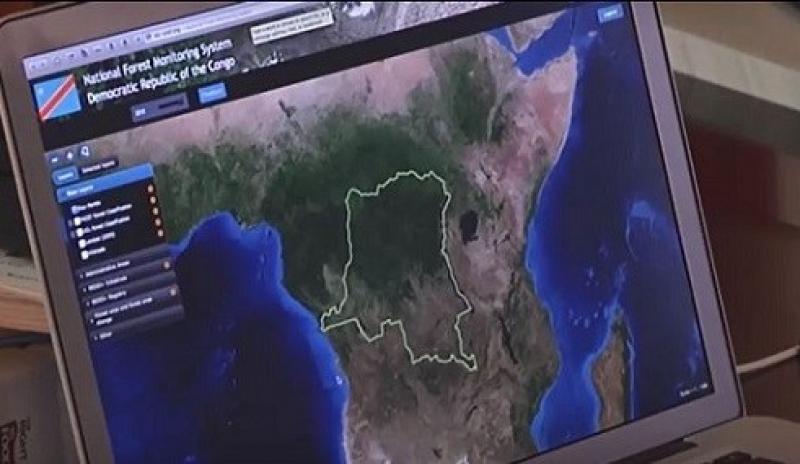 Potenciarán sistemas de información sobre monitoreo de bosques amazónicos