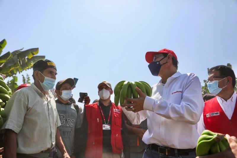 Presidente Vizcarra supervisó infraestructura de productores de banano orgánico