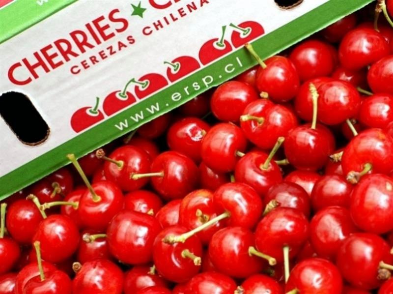 Producción de cerezas chilenas crecerían 12.2% en la campaña 2020/2021