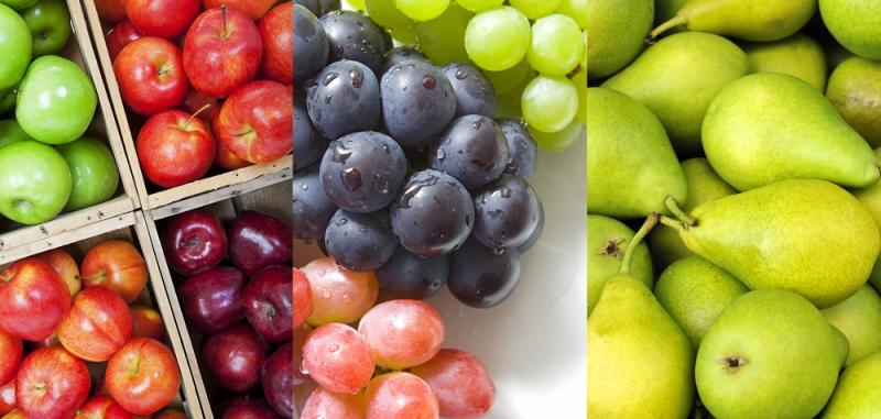 Producción de uva de mesa, manzanas y peras de Chile caerían en la campaña 2020/2021
