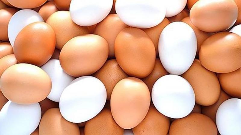 Producción nacional de huevos creció 10.2% en el primer semestre del año