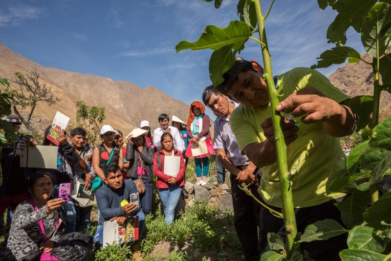Productores se capacitan en los procesos de control interno para la producción agroecológica