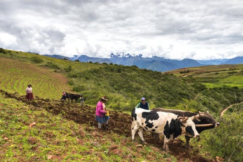 Protocolo de Interoperabilidad de Información Geográfica simplificará titulación de la propiedad agraria ejecutada por Gobiernos Regionales