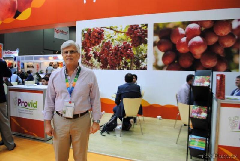 """Provid: """"Se espera un incremento importante en la producción y exportación de uva de mesa para la presente campaña"""""""