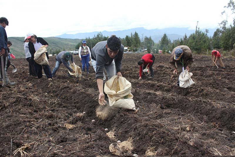 Puno: personal de Agro Rural es capacitado para vender guano de las islas a precios bajos a pequeños agricultores