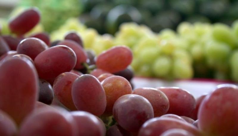 Reporte de la FDA: ¿qué productos peruanos vinculados a la agroexportación fueron rechazados en los últimos meses en el mercado de EE.UU.?