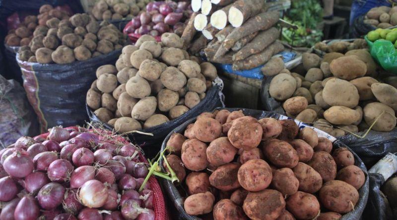 Restricciones a las exportaciones y seguridad alimentaria