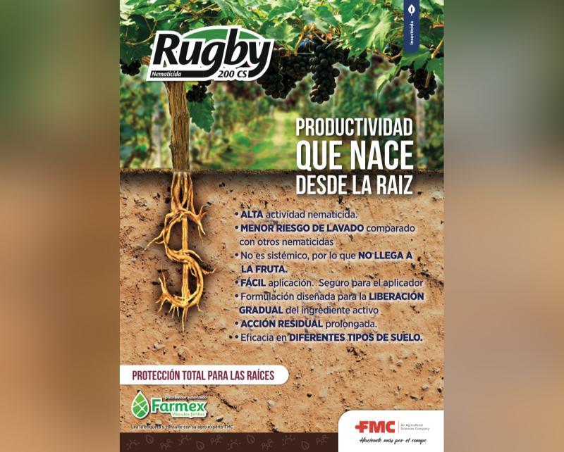 """""""Rugby 200 CS"""": alta eficiencia en el control de nematodos"""