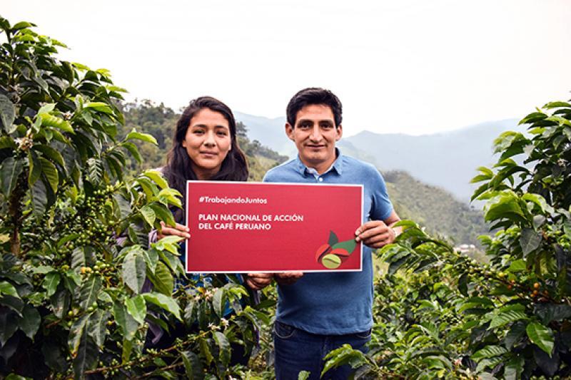 Se debe concretar la creación de la Comisión Multisectorial de Café y activar su rol líder en el seguimiento a la implementación del Plan Nacional de Acción del Café Peruano
