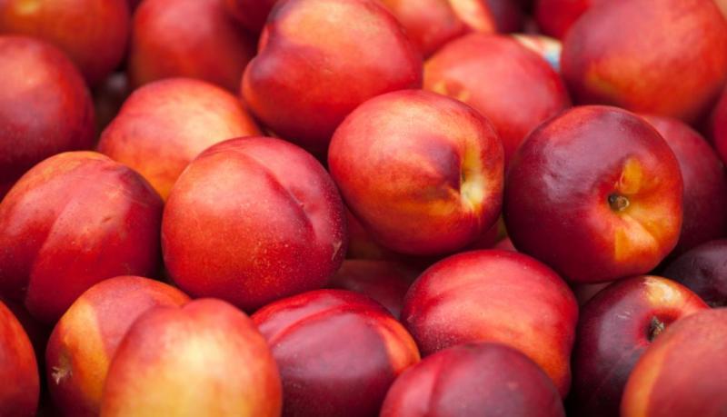 Senasa aclara que en Perú no hay importaciones de frutos chilenos comprometidos en posible contaminación con listeria