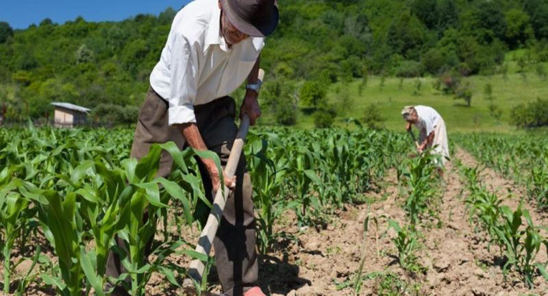 Solamente el 15% de los agricultores poseen título de propiedad