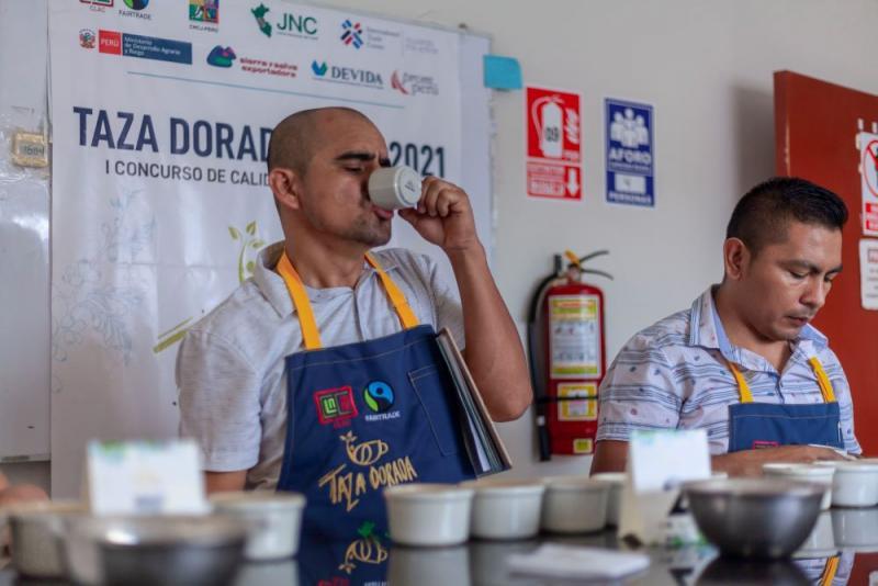 Trece contenedores de cafés de alta calidad clasifican a la final del concurso Taza Dorada Perú 2021