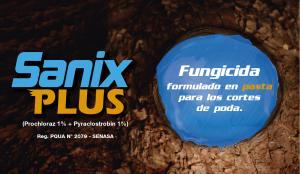 Grupo Andina tiene el 50% del mercado de formulados en pasta para cortes de poda en frutales