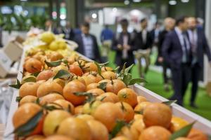 Abierto el registro de visitante profesional para inscribirse en Fruit Attraction 2021 y en LIVEConnect