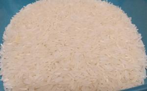 ADEX pronostica mayor exportación de arroz