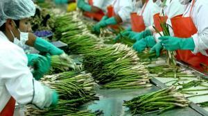AGAP: Congreso aprobó una nueva ley agraria con serias deficiencias técnicas