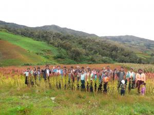 AGRICULTORES DE QUINUA EXHIBIERON PRODUCTOS EN FERIA DE INIA