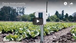 Agricultura de precisión permite optimizar los recursos e insumos que utilizan las empresas