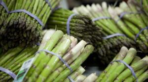 Agro Exportaciones Perú Foods exportará espárrago congelado el 2018