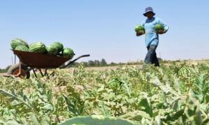 AGROECOSISTEMAS DEL PERÚ: UNA EXPERIENCIA QUE NUESTRAS AUTORIDADES DEBERÍAN VIVIR